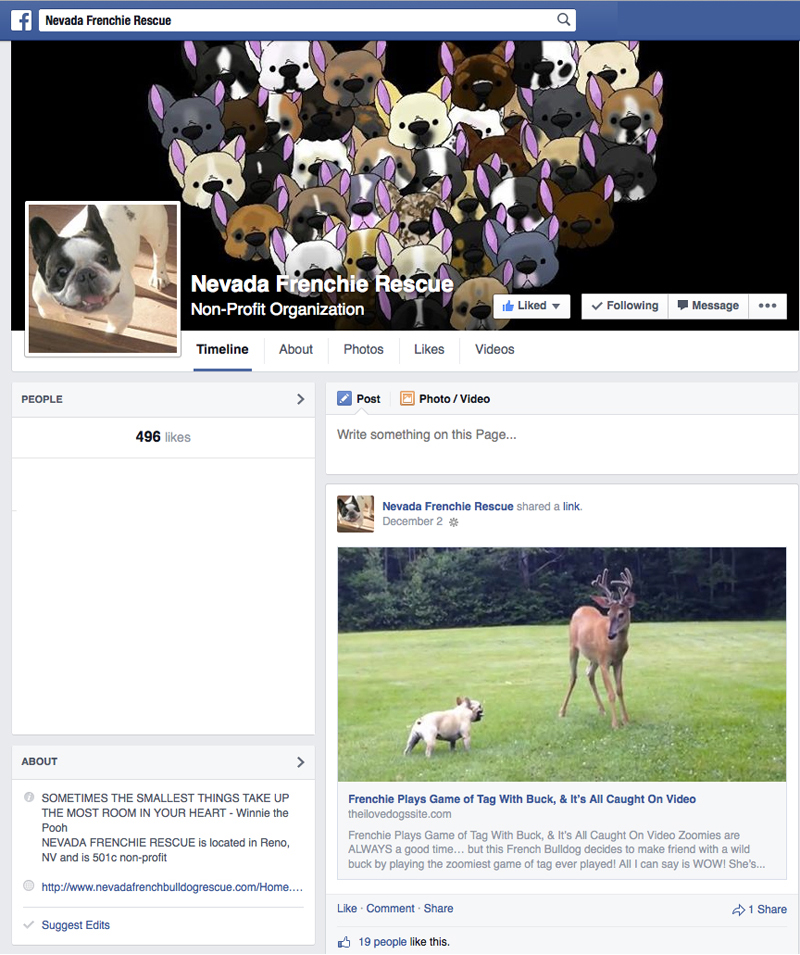 Facebook_Nevada_Frenchie_Rescue